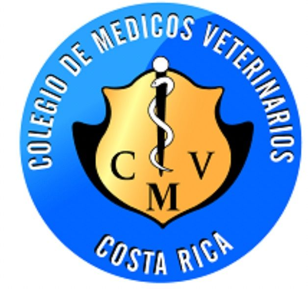 Centro de Convenciones de Costa Rica 6